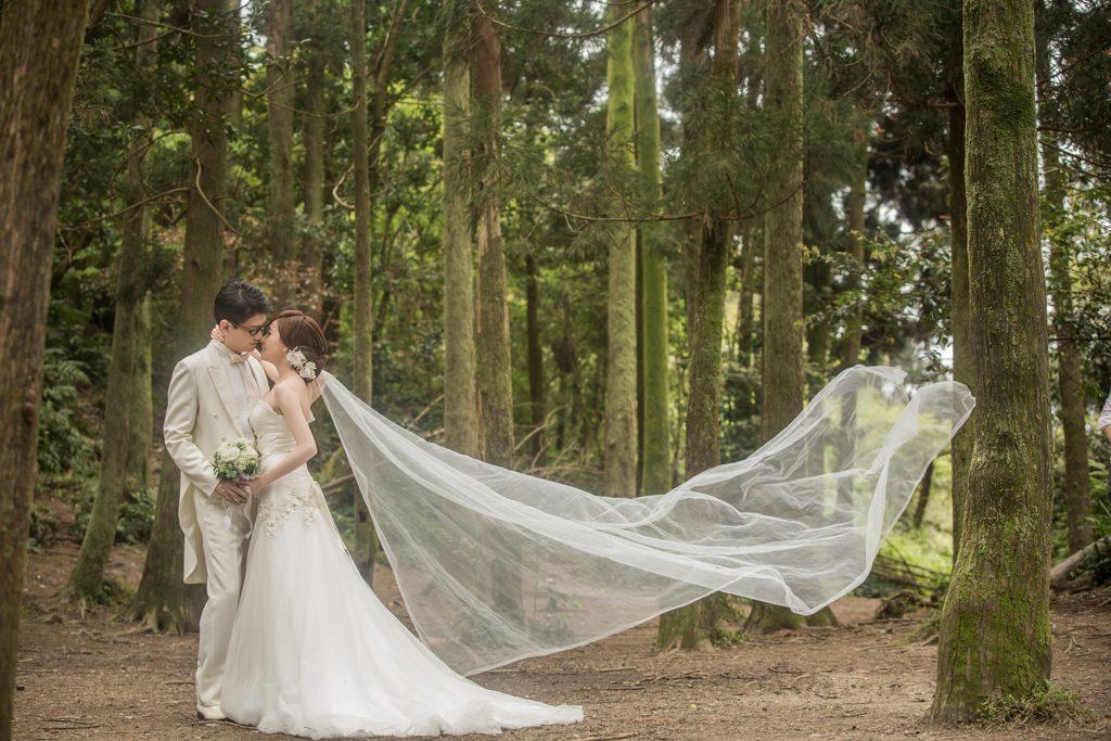 陽明山黑森林&真愛婚紗攝影基地